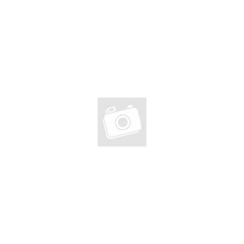 használt 320 GB HDD